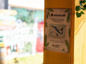 Experiential events Casa Barcardi festival environmental signage
